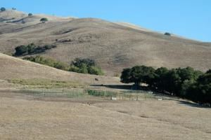 Event Venues And Vendors In Fremont Ca